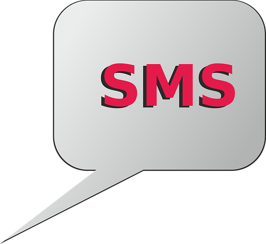 Consolider sa stratégie marketing par la campagne SMS