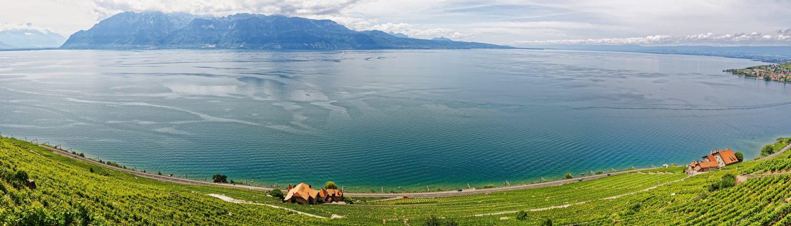 Les vins suisses souffrent-ils  d'un déficit de promotion ?