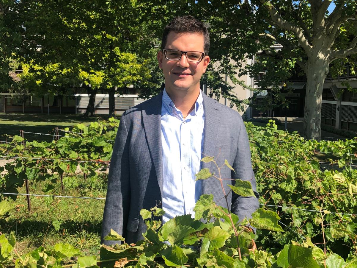 Interview d'Alexandre Mondoux: «Un outil intéressant pour gérer la commercialisation du vin serait l'introduction d'une réserve climatique»