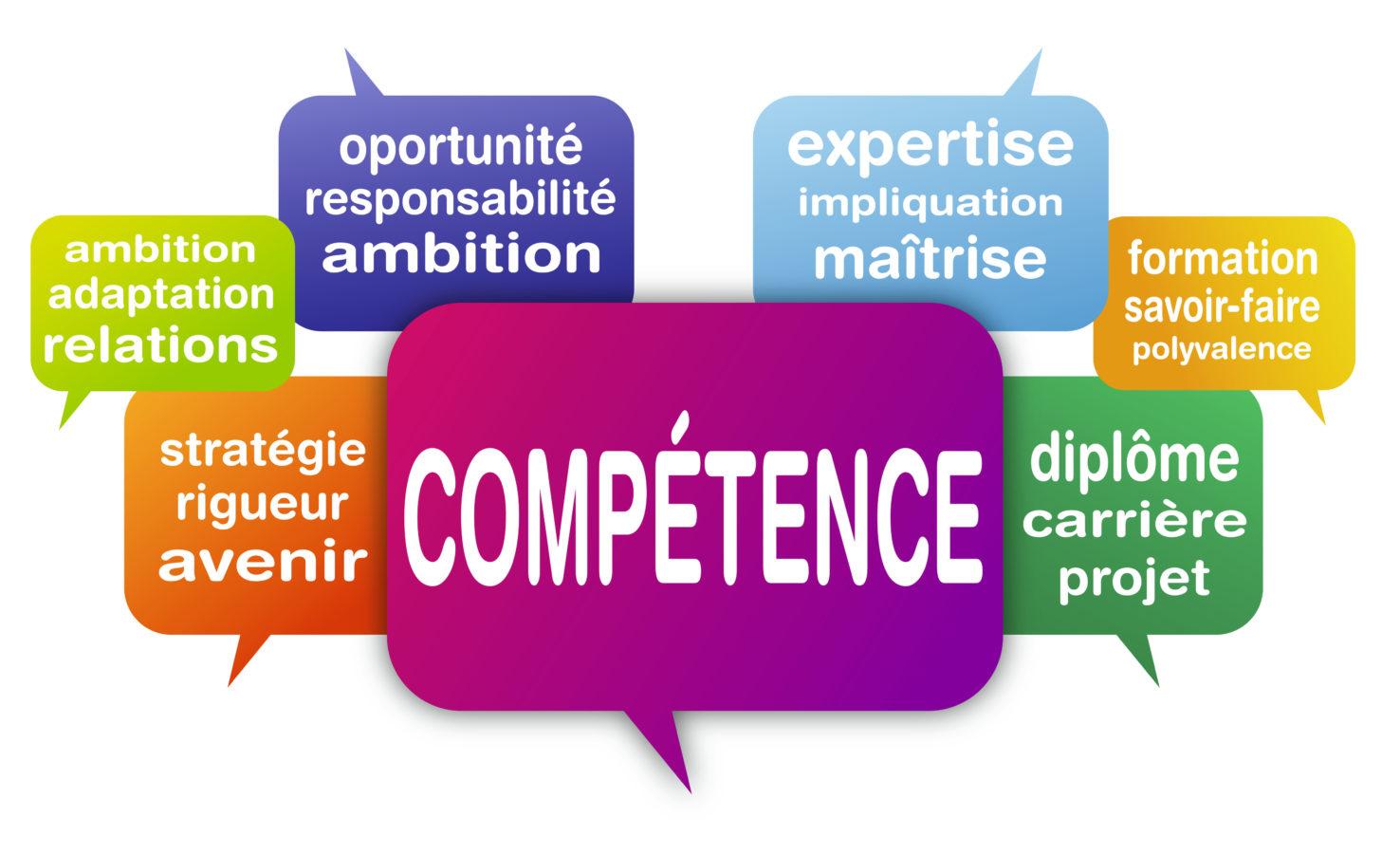 gestion des comp u00e9tences dans une entreprise  quelles strat u00e9gies adopter