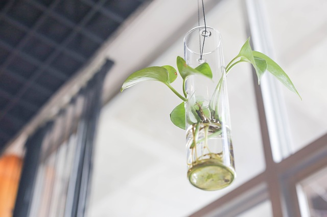 Biopôle SA dévoile son nouveau fonds destiné aux start-ups afin de favoriser les nouvelles innovations en sciences de la vie
