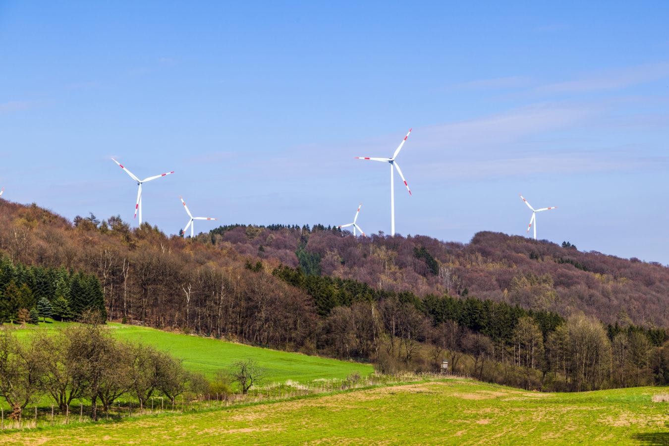 Construire des éoliennes en forêt est possible