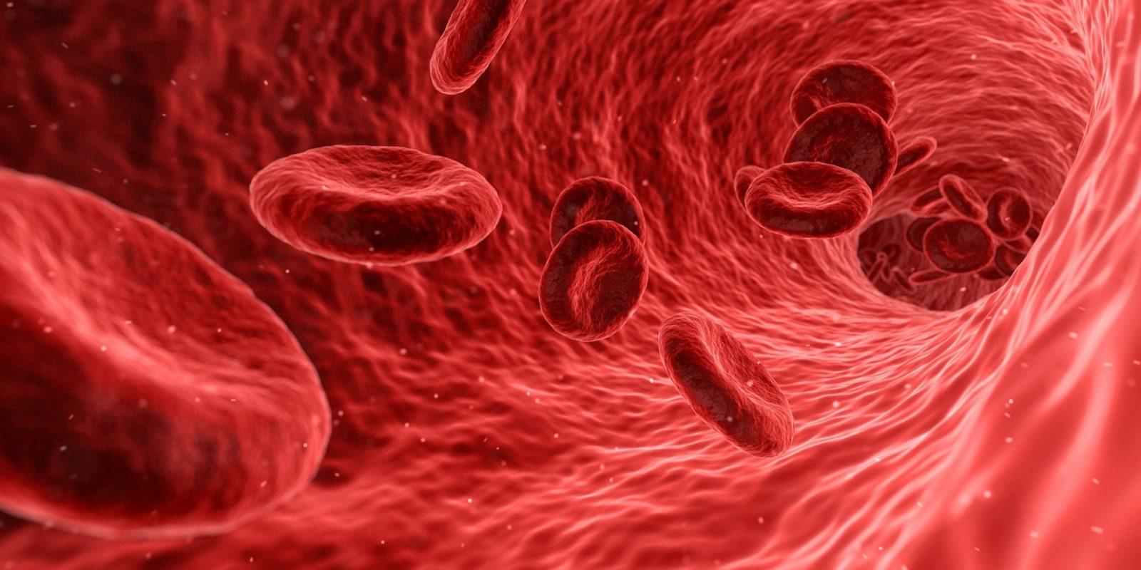 L'EBITDA est aux opérations ce que le sang est au cœur