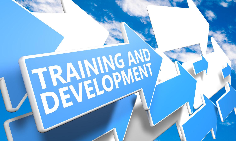 Le Développement Éducatif de Carrière, une pratique novatrice