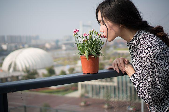 « L'introduction, ou le retour, de la nature en ville est une tendance qui s'implante rapidement dans les désirs et les modes de pensées ».