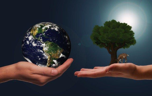Le Janus Henderson Global Sustainable Equity Fund remporte la catégorie Actions monde des Swiss Sustainable Funds Awards