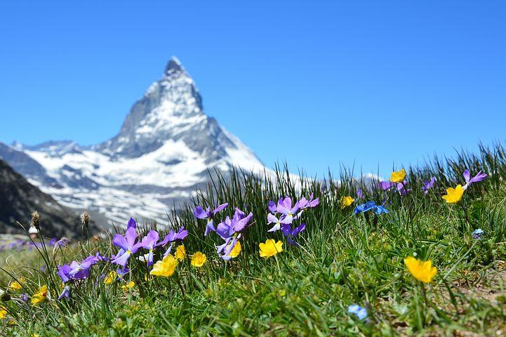 La liste des intervenants au Sommet de Zermatt est impressionnante