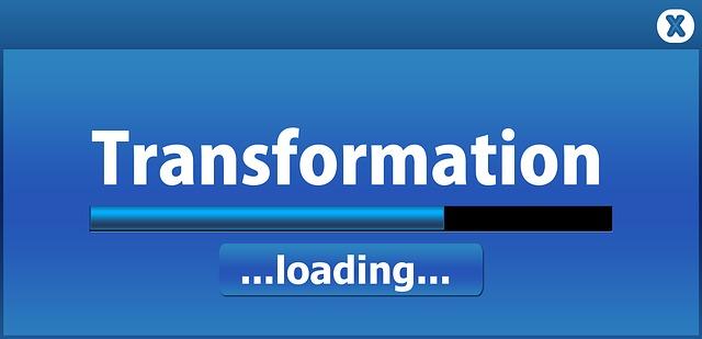 Transformation des entreprises: les Typologies: volet 3/4